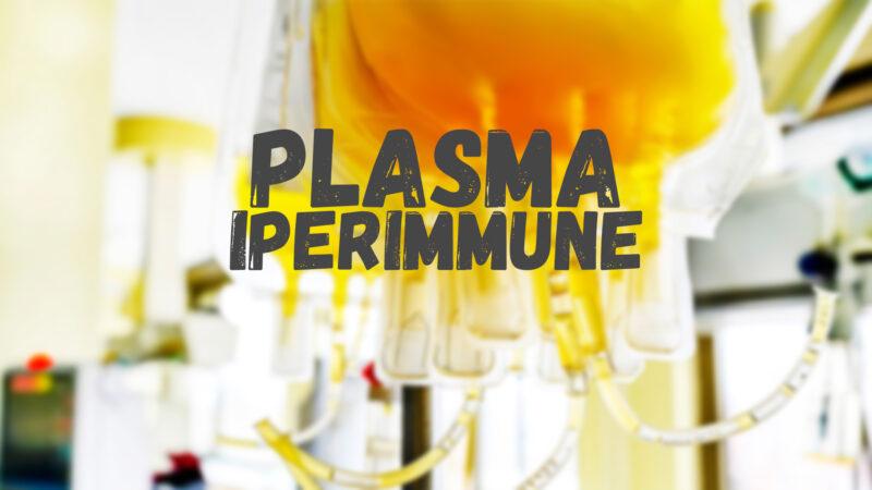 Raccolta plasma iperimmune